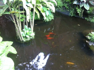 Their  pond with various forms of fishes